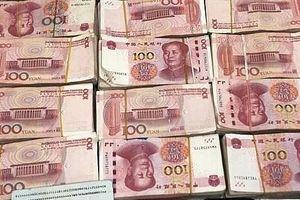Quảng Ninh: Truy tố, xét xử 14 vụ trốn thuế, buôn bán hàng cấm