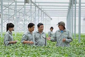 Đến 2030 có 100.000 DN kinh doanh trong lĩnh vực nông nghiệp hiệu quả