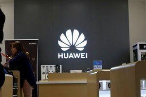 Huawei xác nhận điện thoại của hãng tiếp tục chạy Android, không dùng hệ điều hành mới