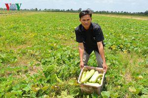 Nam Bộ đối diện nguy cơ thiếu nước sản xuất nông nghiệp