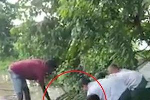 Giải cứu tê giác khỏi bị đuối nước trong trận lũ quét ở Ấn Độ