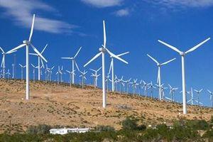 Kenya ra mắt trang trại điện gió lớn nhất châu Phi
