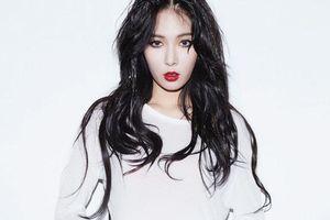 Để nổi tiếng, thành công như bây giờ, ai biết HyunA, Kim Jung Ah từng phải debut nhiều lần đến vậy