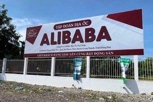Điều tra sai phạm đất đai liên quan đến thuế của Địa ốc Alibaba
