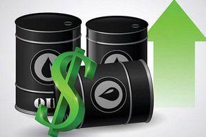 Giá xăng, dầu (20/7): Tăng nhẹ trở lại