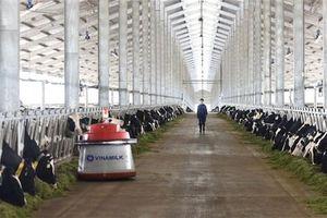 Chính phủ muốn Nông nghiệp Việt vào Top 15 phát triển nhất thế giới năm 2030