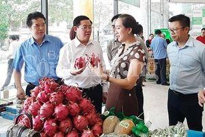 Kinh tế tập thể trong nông nghiệp: Vẫn chờ động lực để phát triển