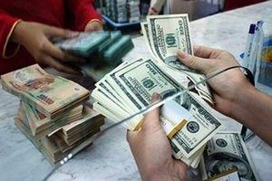 Tỷ giá ngoại tệ hôm nay 20/7: Fed phát tín hiệu, USD sụt giảm