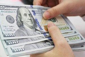 Tỷ giá ngày 20/7: Giá USD tăng mạnh tại ngân hàng thương mại