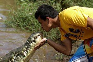 Nụ hôn cá sấu và súng chống drone vào top ảnh tuần