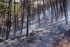 Vừa cứu 5 người do nhà cháy, công an ở Huế cấp tập đi chữa cháy rừng thông