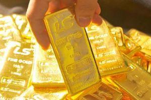 Giá vàng hôm nay 21/7: Từ đỉnh cao, giá vàng rơi tự do