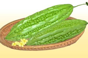 Cách làm canh mướp đắng nhồi thịt ngọt mát và bổ dưỡng cho ngày hè
