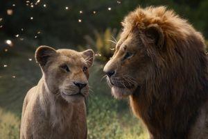 'Vua sư tử' (2019) thị uy sức mạnh khi sớm vượt mốc nửa tỷ USD