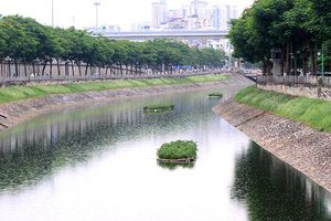 Các chuyên gia Nhật Bản chưa cập nhật đầy đủ thông tin về sông Tô Lịch