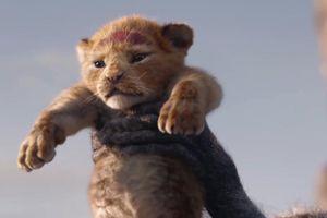 'Vua sư tử' thống trị Bắc Mỹ, thu hơn nửa tỉ USD tại phòng vé toàn cầu