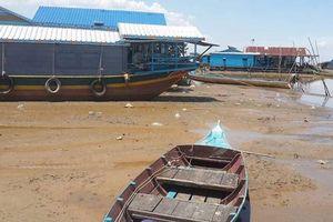 Nước sông Mê Kông thấp kỷ lục trong 100 năm qua, đe dọa ĐBSCL