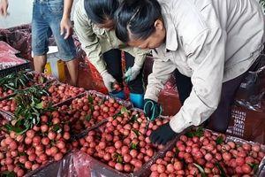 Australia điều chỉnh quy định xuất nhập khẩu nông sản
