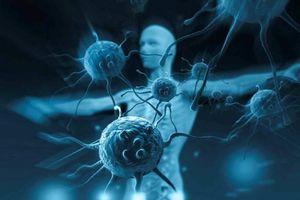 Bệnh nhân ung thư nào có thể điều trị bằng liệu pháp tế bào miễn dịch?