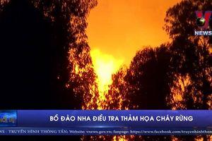 Bồ Đào Nha điều tra thảm họa cháy rừng