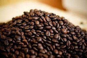 Giá cà phê hôm nay 23/7: Bất ngờ giảm mạnh 500 đồng/kg