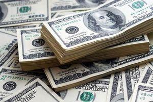 Tỷ giá trung tâm giảm, giá trao đổi USD giảm mạnh 30 đồng