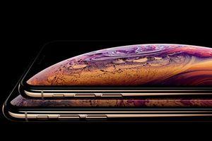 LG cung cấp màn hình OLED cho iPhone 2020
