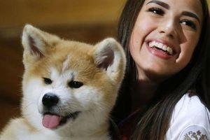 Người đẹp Nga 'gây sốt' với món quà siêu dễ thương cho Thủ tướng Nhật Bản