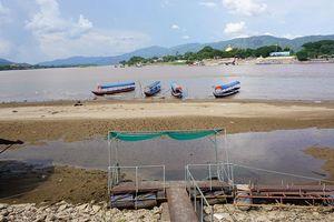 Khốc liệt hạn mặn, sông Mê Kông 'trơ đáy'