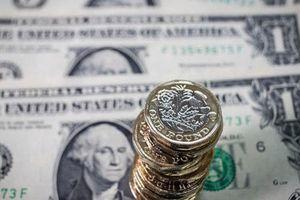 Tỷ giá ngoại tệ hôm nay 26/7: USD tụt giảm, Euro tăng trở lại