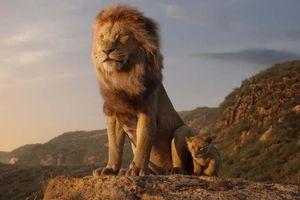 'Vua sư tử' thống trị phòng vé, thu gần 1 tỉ USD sau 10 ngày trình làng