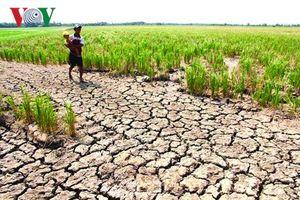 Mực nước sông Mekong thấp kỷ lục, đe dọa các nước hạ nguồn