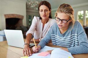 Dự thảo luật quy định phạt tù 2 năm nếu giúp sinh viên làm bài tập