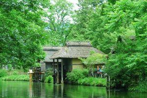 Ngẩn ngơ lạc giữa vùng đất đẹp tựa tiên cảnh ở Nhật Bản
