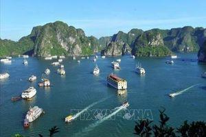 Họp HĐND tỉnh Quảng Ninh: Nóng vấn đề ô nhiễm môi trường vịnh Hạ Long