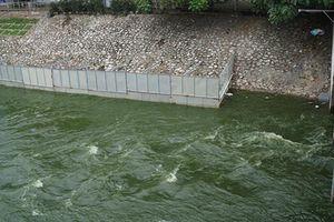Hà Nội xả nước hồ Tây vào sông Tô Lịch để tránh ngập do bão số 3