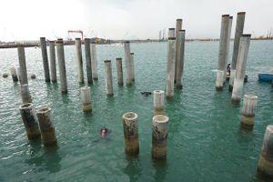 Khai quật tàu cổ ở Dung Quất: Hiện vật không còn nguyên vẹn