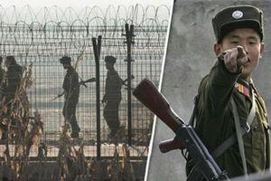 Binh sĩ Triều Tiên đào tẩu sang Hàn Quốc trong đêm