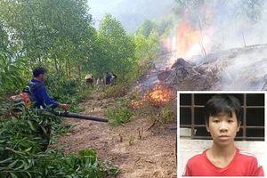 Khởi tố thiếu niên 3 lần đốt rừng để 'trả thù' và 'cho vui'