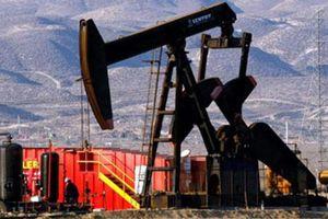 Giá xăng, dầu (1/8): Đầu tháng giảm nhẹ