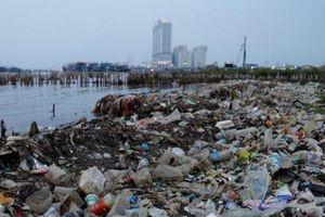 Rác thải nhựa bủa vây, các đại dương đang kêu cứu