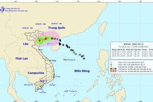 Bão số 3 vào Quảng Ninh, tâm bão giật cấp 10