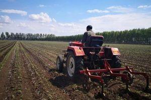 Trung Quốc muốn đẩy nhanh hợp tác về sản phẩm đậu tương với Nga