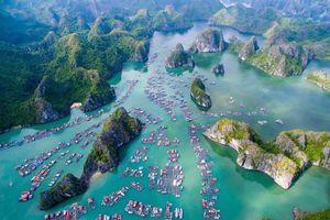 Vẻ đẹp hoang sơ của vịnh Lan Hạ qua ống kính khách nước ngoài