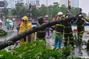 Bão số 3 khiến nhiều cây xanh ở Hà Nội bị đổ, xuất hiện lũ ống cuốn 17 người ở Thanh Hóa