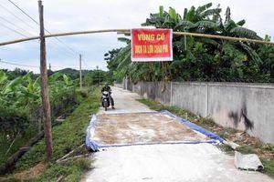 Nghệ An: Một trại lợn phải tiêu hủy do dịch TLCP nhiều nhất