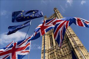 Đức khẳng định sẵn sàng cho mọi kịch bản liên quan Anh rời EU