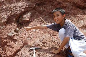 Đi dạo chơi, tình cờ nhặt được trứng khủng long 66 triệu năm tuổi
