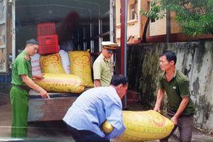 Lạng Sơn: Tiêu hủy 1.610 kg quả trám nhập lậu