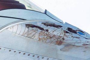 Máy bay F-22 'dập mũi' xuất hiện ở Syria